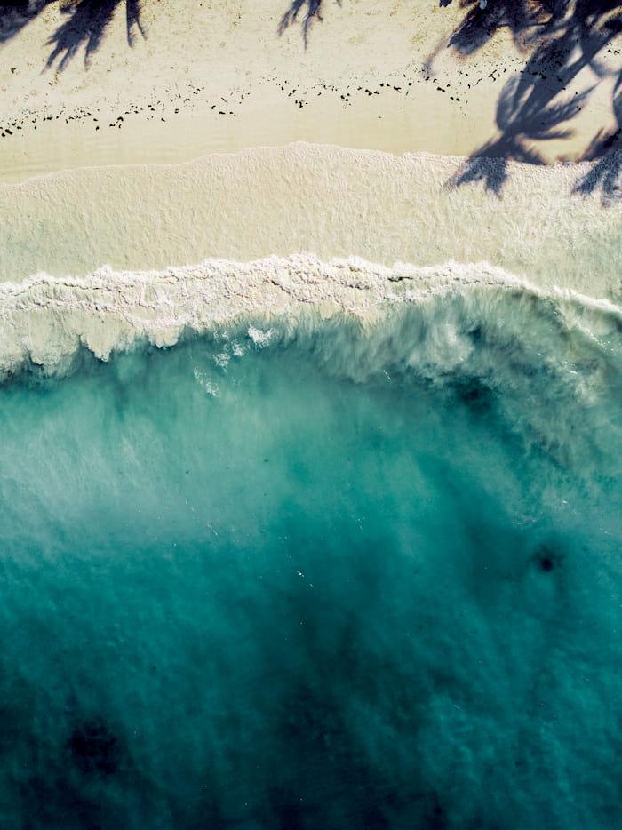 Vista cenital de la playa de Zanzíbar